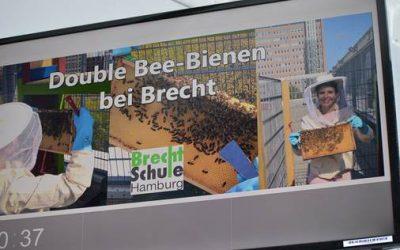"""Die Schulhof-Imkerei """"Double Bee-Bienen"""" im Wochenblatt St Georg"""