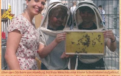 """Bienen machen Schule — Unsere Schulimkerei in der Zeitschrift """"Biene-Mensch-Natur"""""""